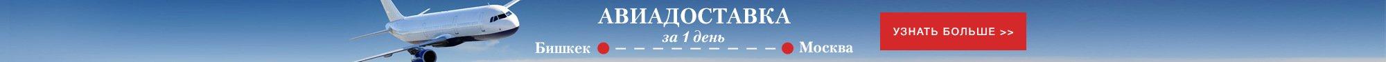 АвиаДоставка в Москву за 1 день